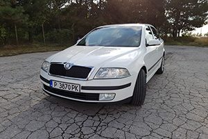 fleet - transportation from Bucharest Airport to any place in Bulgaria